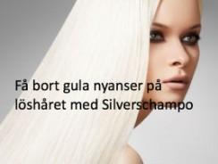 Silverschampo på löshår